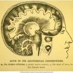 Una dificultad del amor que ni el psicoanálisis ni la neurociencia pueden resolver