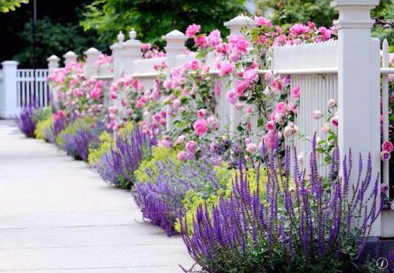 Wenn Sie einen Zaun haben jedoch einige extra-Leben und Farbe um haben möchten, können Sie Sträucher entlang dem Boden Pflanzen. Es ist eine Möglichkeit, beleben Sie den Zaun und Bordstein Beschwerde zu erhöhen.