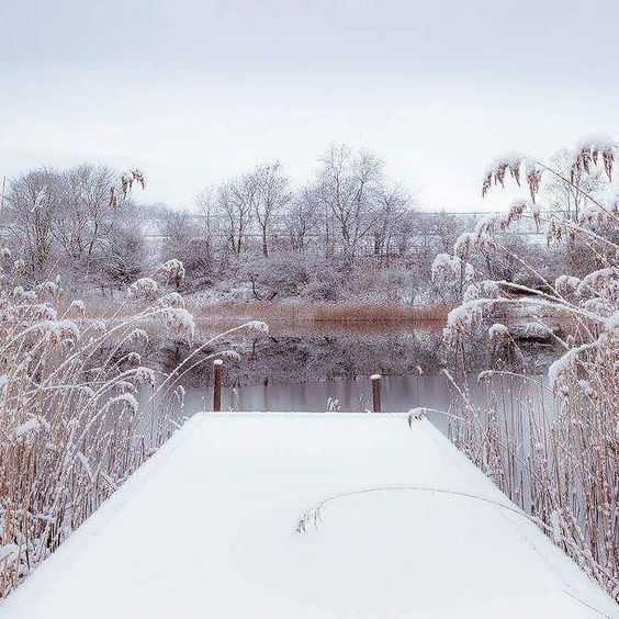 Da PlowMan  a winter scene. #godfirst #snowplowing #jlsnoplowing #clearingthewayyourway #servingmarlborough #marlborough #massachusetts #01752 #508areacode #winterseason #snowstorm #blizzard2016 #goldfromheaven #plowmanslife #PLOWMAN by jlsnoplowing