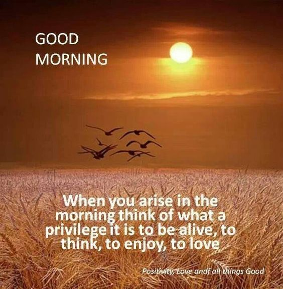 Good Morning: