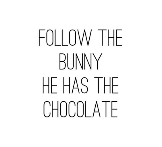 Follow the bunny He has the chocolate: