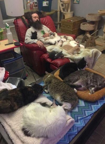 Un  clic pour nos amis les animaux en détresse  .. 73d0806367095aa3d932bf792e0dfc3c