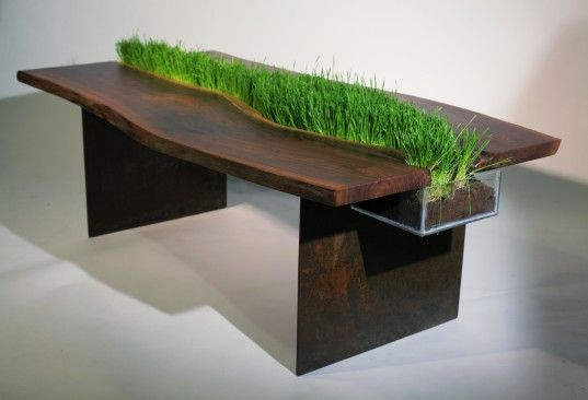 Natural wood dining table charms with green  This is exactly what designer Emily Wettstein