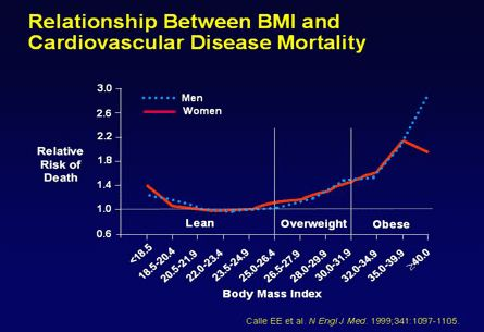 The graph shows very clearly how the risk of death through heart - bmi index chart template