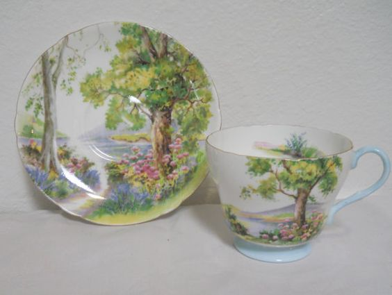 Shelley Teacup and Saucer Fine Bone China Tea Cup and di cyndalees