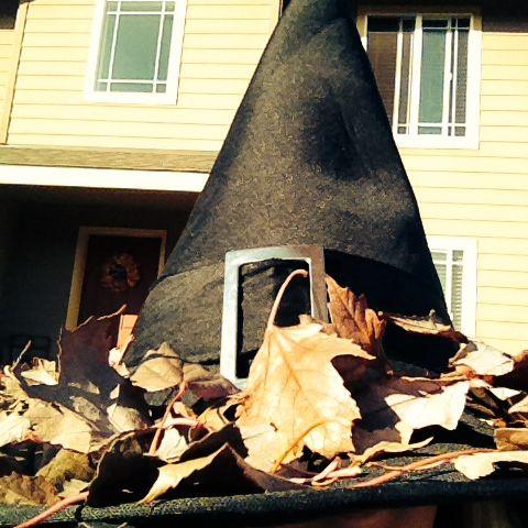 Witchy Witch Witch