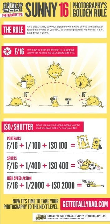 When shooting on a bright sunny day, you'll find that in order to get the least harsh, best exposed pictures, your aperture should be set at F/16 with your ISO the inverse of your shutter speed. So, if you have your ISO set at 200, your shutter speed should be 1/200.