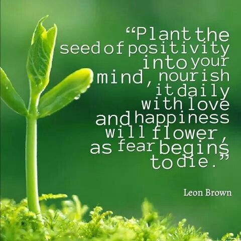 Seed your self with the positive and watch how fear dies