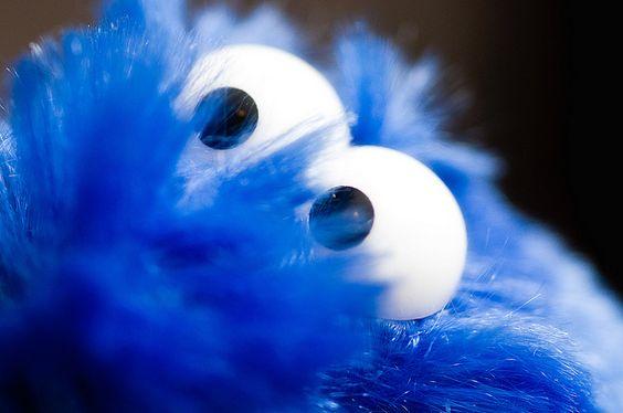 Soft like a muppet #fun #softtoy