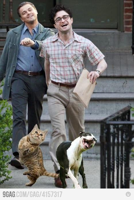 Just Leonardo Dicaprio, Daniel Radcliffe and their pets.... (this is so fake but its so AWESOME! LMAO)