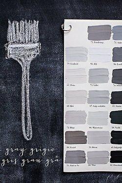 Palette grigie