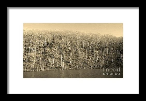 """""""The Creeping Trees Of Haunted Hill"""" From the photography studio of Scott D Van Osdol available at fineartsamerica.com"""
