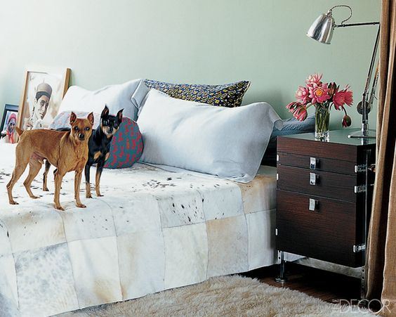 In honor of National Dog Day, we look back at some of the most adorable to grace the pages of ELLE Decor – and the glamorous places they call home
