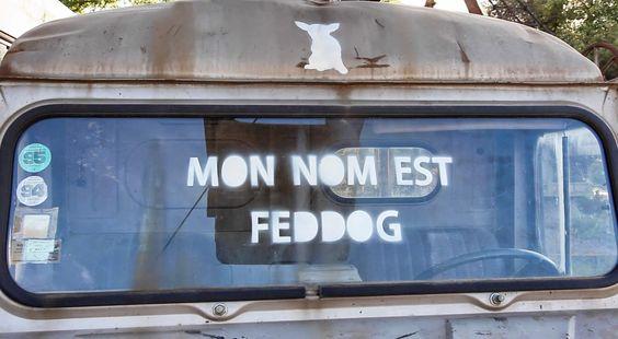 LE TRÈS DRÔLE STREET ART DE FED DOG