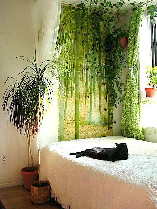 East #16: Heather's Leafy Oasis