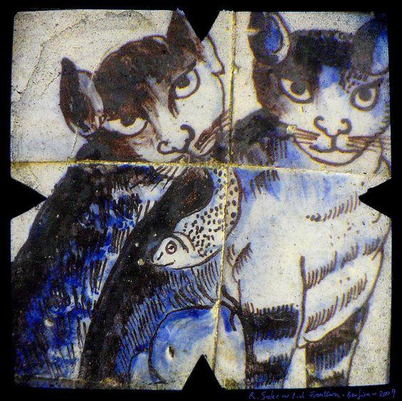 gatos fronteira