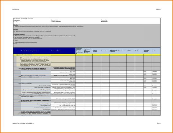 Professional Internal Audit Report Template Example With Blank