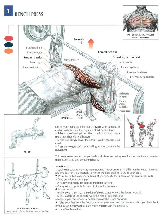 Bench Press ~ Re-Pinned by Crossed Irons Fitness #men #exercise #weights