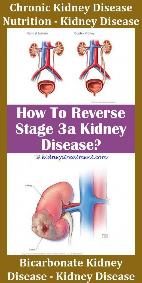 Polysistic Kidney Disease Chronic Kidney Disease Stage 5d Kidney Disease Help Cat Has Stage 2 Kidney Disease Best Dog Diet For Kidney Disease Kidney Disease Mag