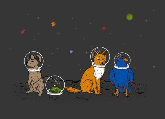 starfox tshirt