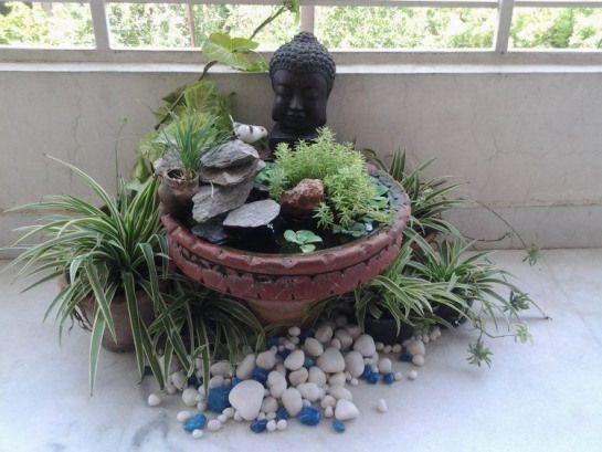 Winziger Miniteich Mit Kleinen Stumpfpflanzen Anlegen Rooftopgarden Indian Rooftop Garden Buddha Garden Miniature Zen Garden Mini Pond