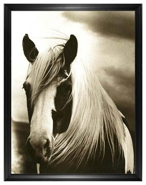 Hyden Rustic Lodge Modern Mussed Horse Photo Wall Art - Framed rustic-prints-and-posters