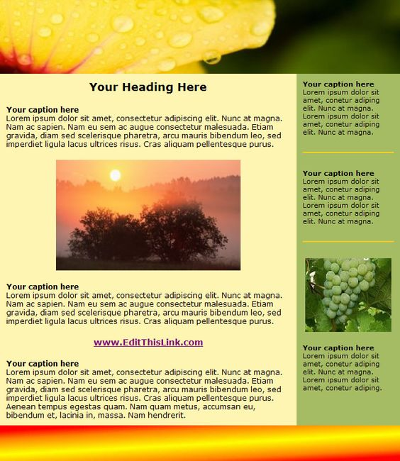 interesting newsletters Fun Newsletter Templates Free - newsletter templates word free