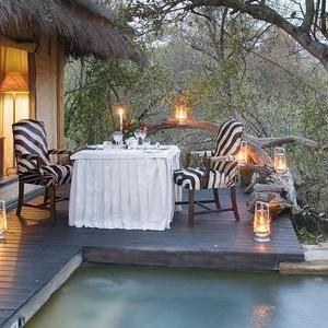 Camp Jabulani, South Africa near kruger national park game drive safari lodge luxury hotel honeymoons travel with kids family friendly elephants cheetahs