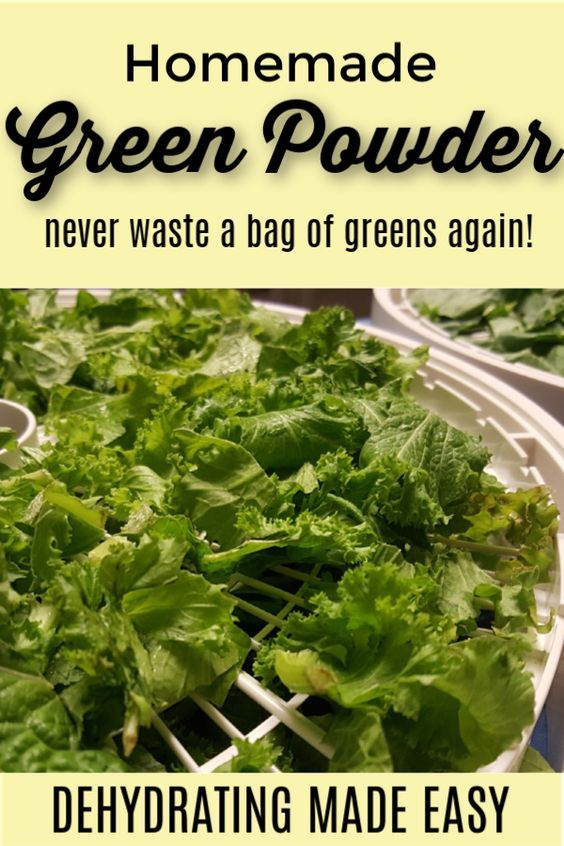 Never Waste A Bag Of Kale Again Dehydrating Made Easy Food Recipes Canning Recipes