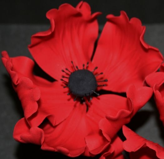 Learn how to make a gum paste poppy flower cake topper with our step-by-step picture tutorial.