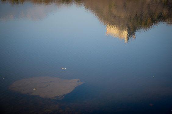 lake @ ivrea