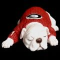 Glory Glory -- Georgia Bulldog Merchandise - UGA Collectibles