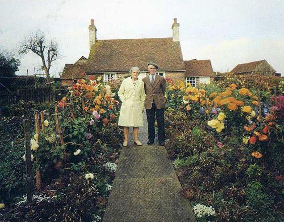 Las fotos de una pareja de ancianos conmueven a las redes sociales