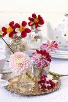 Tischdeko mit Dahlienblüten (Bicolor) auf Silbertablett und Vasen aus Bauernsilber