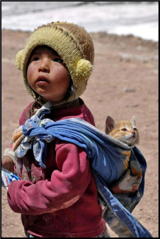 Baby wearing con gatitos!!! Me muero de amor
