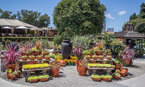 The Gardens Garden Center Displays Garden Design Rogers Gardens