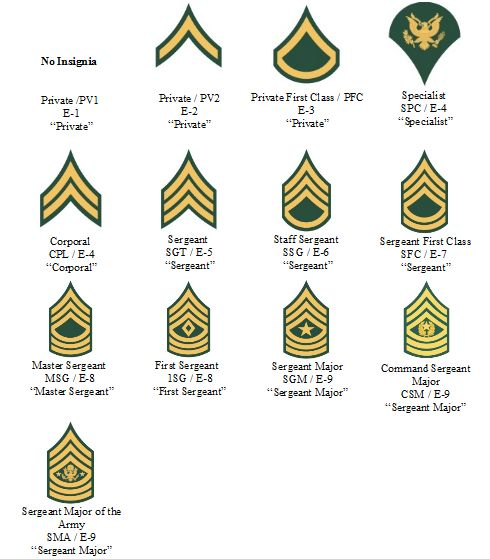 The Army Rank Structure Of The Army