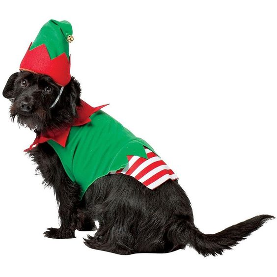 Christmas Dog Costume Santa's Elf Pet Coat Hat Size Choice Holiday Parade New | eBay $6.50