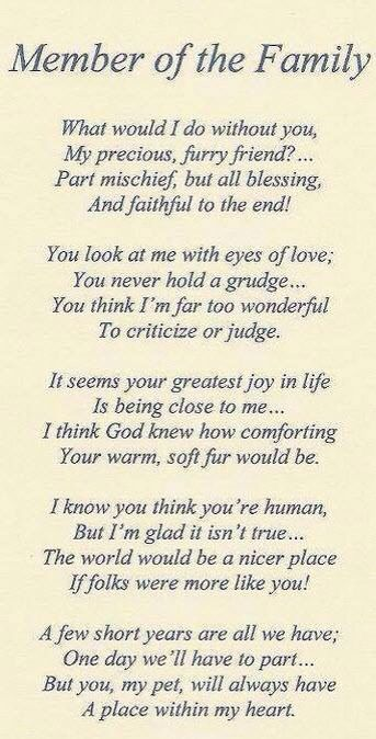 Dog poem ~~ till we meet again.... <3: