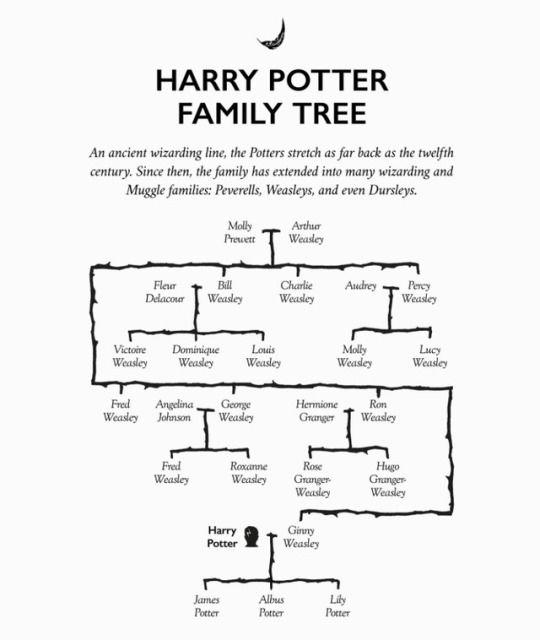 Charmhazel Harry Potter Family Tree Harry Potter Funny Family Tree