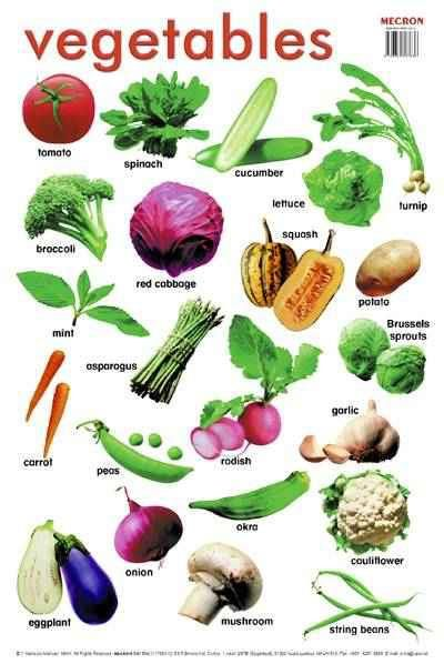English vocabulary - vegetables: