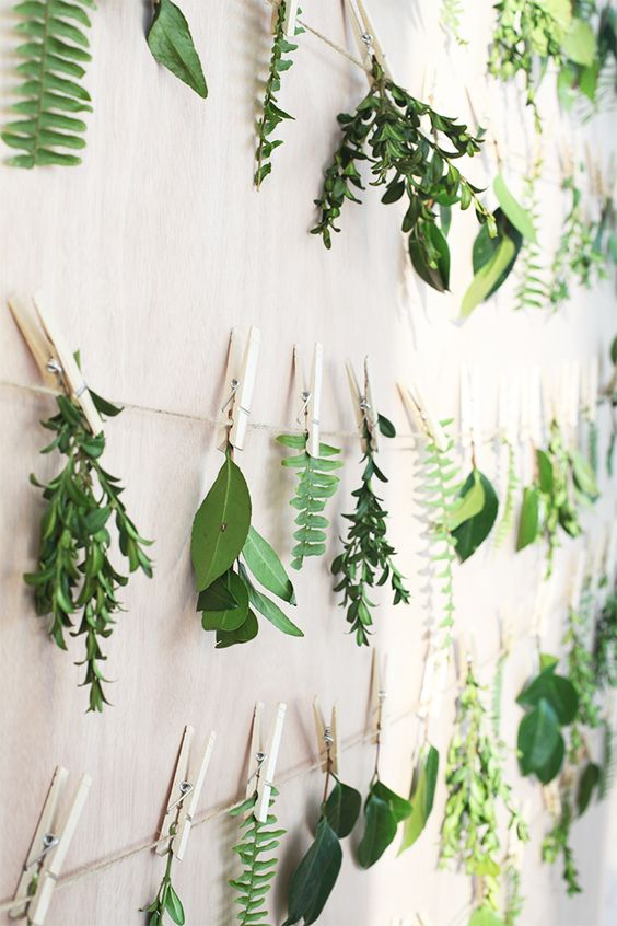 Create a living gallery wall in your home with hanging leaves on wooden pegs.