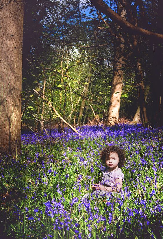 Bluebell Wood portrait photography  | Christina Clare Photography: Bridgnorth, Shropshire
