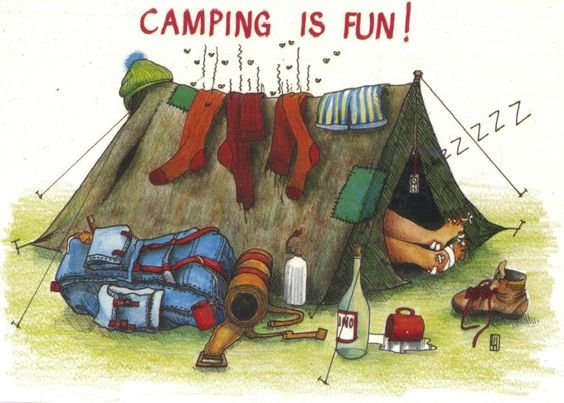 This article is funny :) Ive always thought...Camping is awesome! Whats not to LOVE? I guess not everybody feels this way? :)