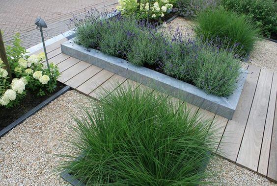 Strakke robuuste voortuin gardens pinterest modern for Strakke voortuin
