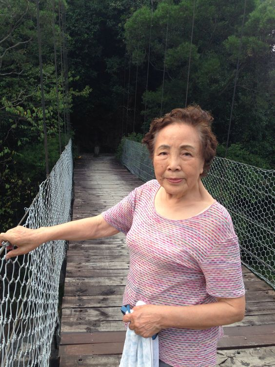 Cable bridge over 濁水溪