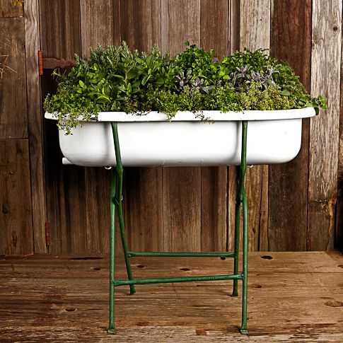 From Williams Sonoma, a 1930's Hungarian washtub. $199. So many possibilities!
