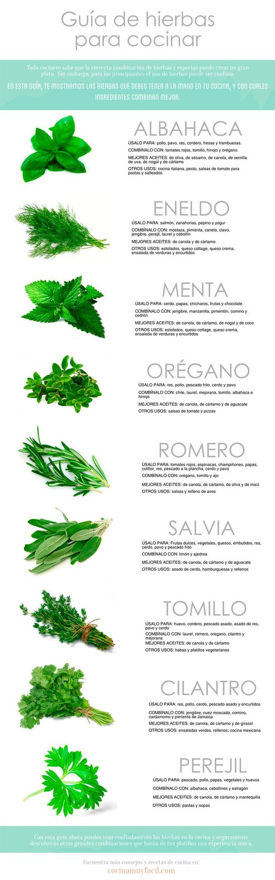 Les ofrecemos una guía de hierbas para cocinar en una infografía clara, que te ayudará a combinar mejor las especias y hierbas en la cocina. #Infografía #Infographic::
