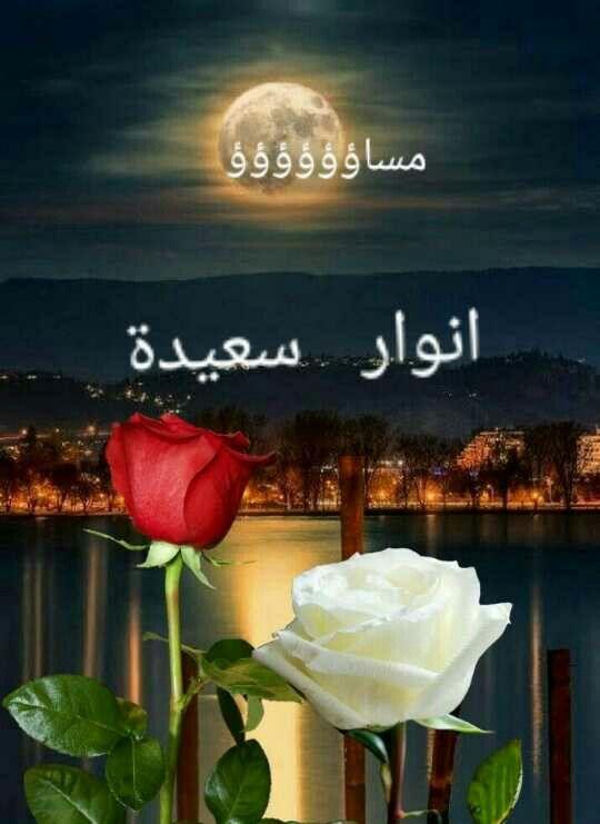 مساء الخير Sweet Dreams My Love Good Night Sweet Dreams Good Morning Images