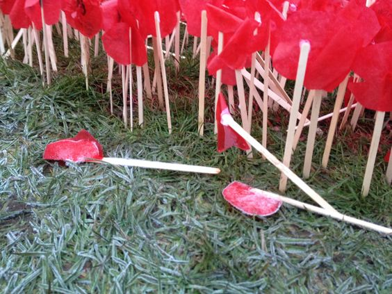 Poppy 1914- 2014
